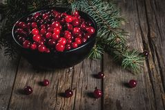 Fresh raw cranberry. Autumn harvest, seasonal berries. Fresh raw cranberries in a black bowl, with Christmas tree branches, on an old wooden village table, copy Royalty Free Stock Image