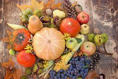 Eating healthy seasonal food organic fruit and vegetable - seasonal harvest on table. Autumn harvest, seasonal fruit and vegetable on rustic wooden table Royalty Free Stock Image