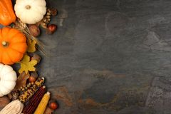 Autumn Harvest Side Border Over A Slate Background Stock Image