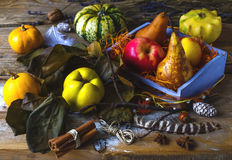 Autumn harvest still life Royalty Free Stock Images