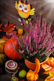 Autumn harvest still life Royalty Free Stock Image