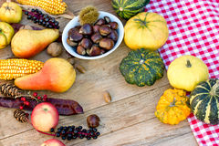 Autumn harvest on table Stock Image