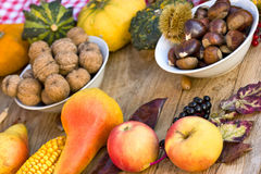 Autumn harvest on table - Autumn fruits Stock Photography