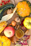 Autumn harvest on table Royalty Free Stock Photo