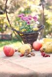 Autumn harvest on table Stock Image
