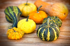 Autumn harvest on table Royalty Free Stock Photography