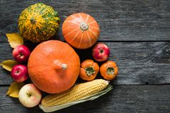 Autumn Harvest Thanksgiving Background royalty free stock photography