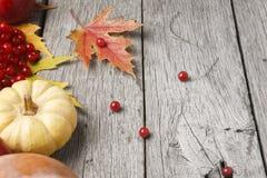 Thanksgiving Fall Autumn Harvest Wood Background Stock Photo