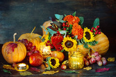 Autumn harvest. Stock Photography