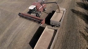 Autumn harvest. Unloading of grain flax combine into a truck. Go Pro aerial photography. stock footage
