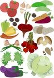 Autumn harvest vegetables Stock Image