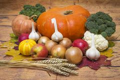 Autumn harvest of vegetables from the garden. Pumpkin, onion, garlic, apples, broccoli, wheat. Ingredients of healthy nutrition. stock photo