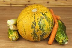 Autumn harvest vegetables. Growing organic vegetables in the country. Diet food for weight loss. Royalty Free Stock Image