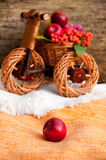 Autumn harvest in a wicker bike Stock Images