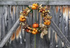 Autumn Harvest Wreath. Decorative wreath containing representations of various autumn crops hanging on weathered wooden fence gate Royalty Free Stock Photos
