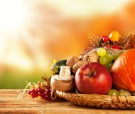 Autumn harvested fruit and vegetable on wood Stock Image