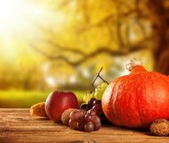 Autumn harvested fruit and vegetable on wood stock photo