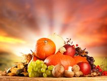 Autumn harvested fruit and vegetable on wood Stock Photos