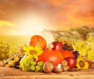 Autumn harvested fruit and vegetable on wood Stock Images