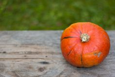 Autumn and harvesting: Pumpkin is lying on a rustic, wooden table. Text space. Orange pumpkin is lying on a rustic wooden table. Text space halloween fall autumn royalty free stock images