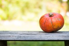 Autumn and harvesting: Pumpkin is lying on a rustic, wooden table. Text space. Orange pumpkin is lying on a rustic wooden table. Text space halloween fall autumn royalty free stock photo