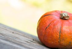Autumn and harvesting: Pumpkin is lying on a rustic, wooden table. Text space. Orange pumpkin is lying on a rustic wooden table. Text space halloween fall autumn royalty free stock image