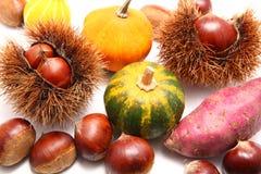 Autumn harvests. Japanese chestnut, pumpkin, sweet potato royalty free stock photos
