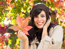 Autumn has arrived Stock Photography