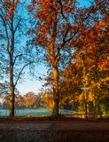 Autumn has arrived with colours Royalty Free Stock Images