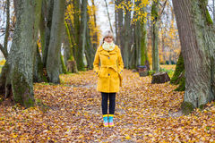 Autumn has come. Young woman standing surround by yellow autum leafs Royalty Free Stock Image