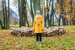 Autumn has come. Young woman standing surround by yellow autum leafs Stock Photos