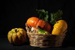 Autumn has come Stock Photo
