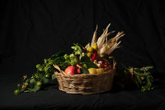 Autumn has come. A group of tipical agricultural products of autumn (pumpkins, pears, walnuts, pomegranates, arbutus, corn) on a black background with a Royalty Free Stock Photo