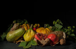 Autumn has come. A group of tipical agricultural products of autumn (pumpkins, pears, walnuts, pomegranates, arbutus, corn) on a black background with a grazing Stock Image