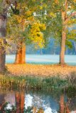 Autumn has come. Morning on the Lake Stock Photography