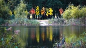 Autumn has come Royalty Free Stock Photo
