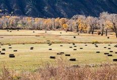 Autumn hay bales Stock Photos