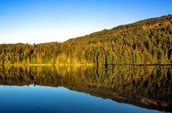 Autumn on Hayward Lake Royalty Free Stock Photography
