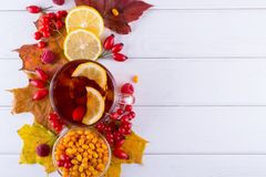 Autumn healthy beverages concept. Cup of tea with autumn berries sea buckthorn,  viburnum, rose hip, rowan and fall leaves. Drink Royalty Free Stock Photo
