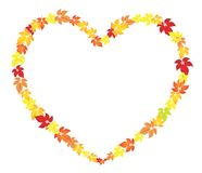 Autumn heart. A garland of autumn leaves in the form of heart Stock Images