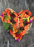 Autumn heart from forest plants stock image