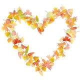 Autumn heart illustration Stock Image