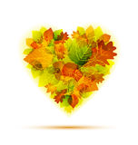 Autumn heart Stock Photos