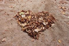 Autumn heart Royalty Free Stock Images