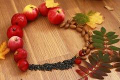Autumn heart Stock Image