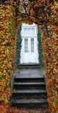 Autumn -- hedge and entrance door Royalty Free Stock Images