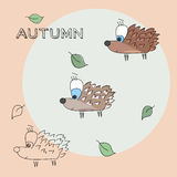 Autumn hedgehog. Three hedgehogs with leaves in circle Stock Photo