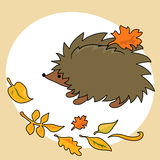Autumn hedgehog Stock Photo