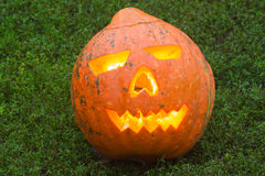 Autumn helloween pumpkin Stock Image