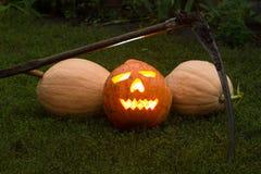 Autumn helloween pumpkin Royalty Free Stock Photo